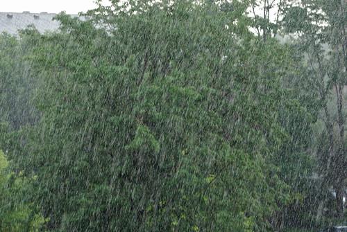 002 rain