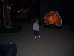 Iain goes exploring the treasures (seanabrady) Tags: museum iain geode hmns