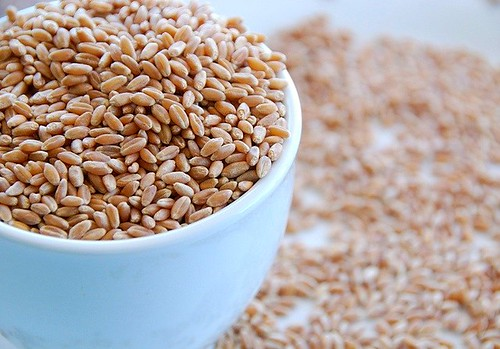 dry wheatberries