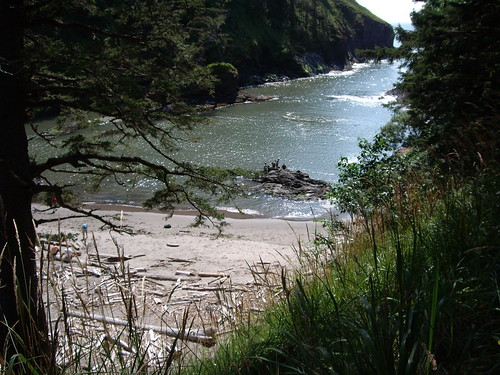 The View - Cove at Cape Disappointment