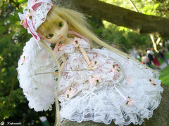 Pullip Paja (Lotus) - Laces & Umbrella 2 (Nekounette) Tags: white umbrella doll lotus sweet lace pullip paja marieantoinette rococo junplanning