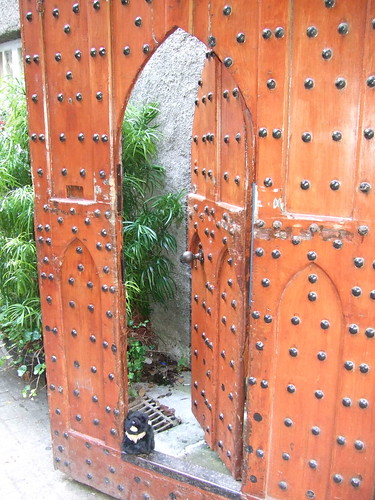 Wooden door at Malahide Castle