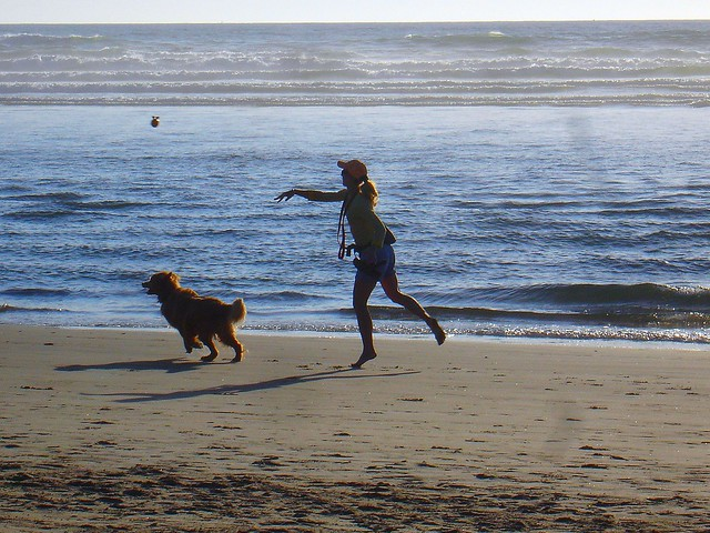 Not Me, Not My Dog...But A Shot I Love