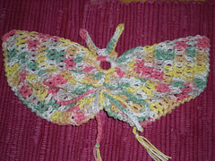 Butterfly Washcloth Craft