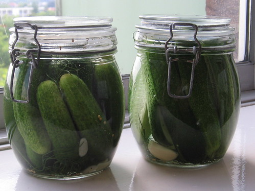 Fridge Pickle Project