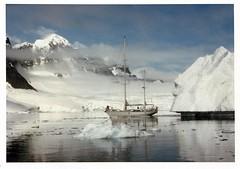 880204 Cloud Nine reduced (rona.h) Tags: 1988 february antarctic cloudnine ronah neumayerchannel sailboatsandsailing vancouver27 bowman57
