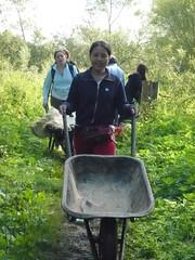 各國志工來到英國保育假期,付出勞力維護草澤生態。