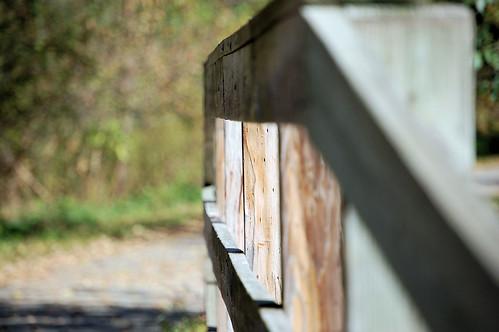 BridgeLines Along Root River Trail