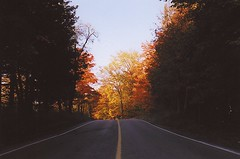Early Morning on the Road (Bill Smith1) Tags: thanksgiving fuji superia like what does nikonf3hp nikkorais50f18lensfuji 400gta greenbeltbelfountain ontarioearly morningreally