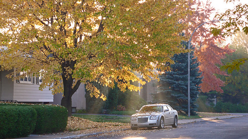 Autumn in Longueuil