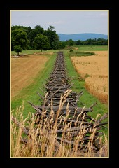 Antietam Fenceline near the Cornfield (mooseisloose ~ Gary) Ta
