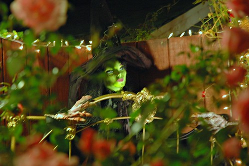 Halloween Witch at Mill Rose Inn, Half Moon Bay, California, USA