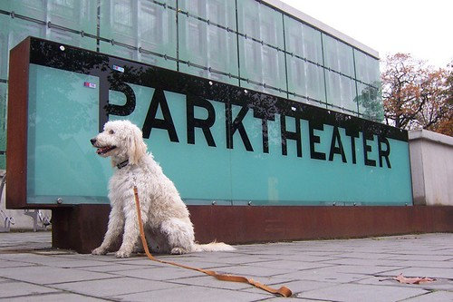 The Bark Theater!