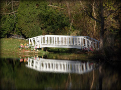 Bridge Over Secluded Waters (Hammer51012) Tags: bridge trees white water geotagged pond lafayette indiana olympus tippecanoecounty anawesomeshot sp550uz