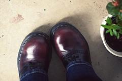 11.12.08 (whitneybee) Tags: plant black green leather shoes maroon jeans saddleshoes steeltoe gripfast nobloshoemo