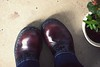 11.12.08 (whitneybee) Tags: plant black green leather shoes maroon jeans saddleshoes steeltoe gripfast nobloshoemo