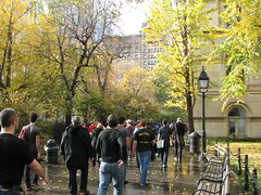 And as we all walked together to secure our civil rights, we pondered the lovely autumnal scenery between City Hall and the Tweed Courthouse. by epicharmus, on Flickr