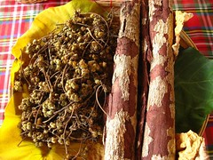 dried fruit and bark of the samak tree