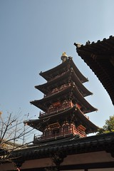 蘇州2008 - 寒山寺(13)