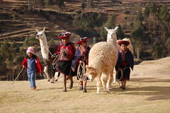 Sacred Valley (Black Rock Photo) Tags: peru kids llama sacredvalley aymara peruvianimages