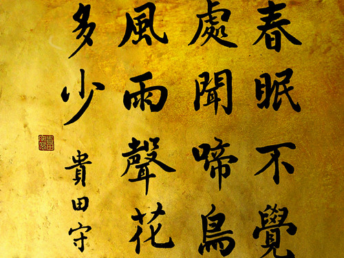 """zen_graphia_57 • <a style=""""font-size:0.8em;"""" href=""""http://www.flickr.com/photos/30735181@N00/3117591959/"""" target=""""_blank"""">View on Flickr</a>"""