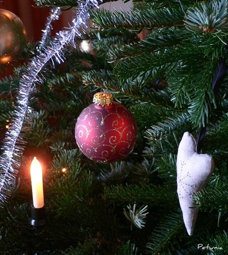 Juletre, god dag!