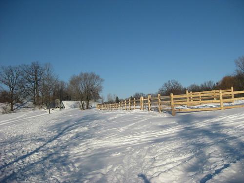 Winter Training Run after Fresh Snowfall