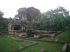 0501 Sri Lanka - 098