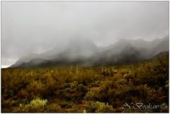 Dusting of Snow Nearing the Desert Floor (NatalieBrokaw) Tags: arizona snow desert snowfall sonorandesert superstitionmountains