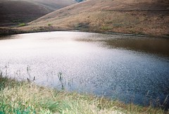 sigh no more no more (aprilsaur) Tags: sunset water cool pond ripples breeze brushypeak