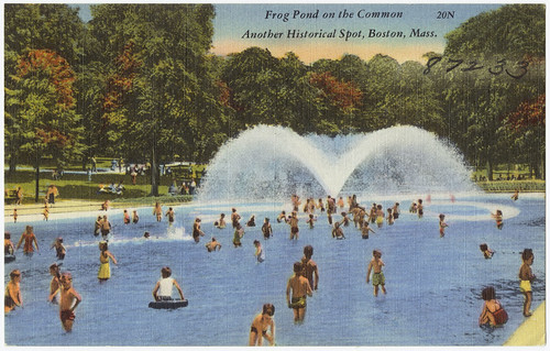 Frog Pond on the Common