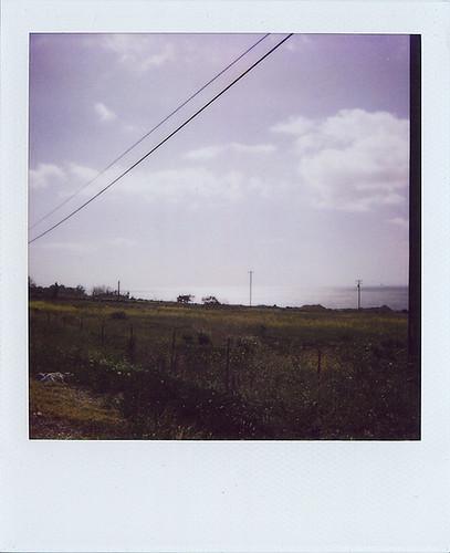 California08