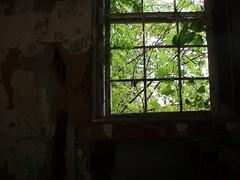 P6290239 (Blue Taco) Tags: urbandecay urbanexploration abandonedhospital thingsleftbehind