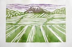 Tea fields and Mt Fuji - multicoloured linoprint (10b travelling) Tags: mountain art berg ctb japan ink painting print volcano etching montana monoprint artist fuji tea kunst peak exhibition pai