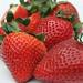 Juicy Big Red Strawberries