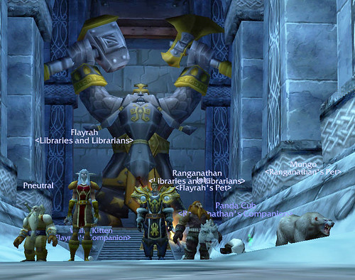 Libraries and Librarians WarCraft Guild Group Photo
