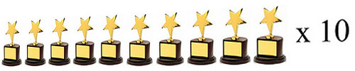 Star Award Gold_x10