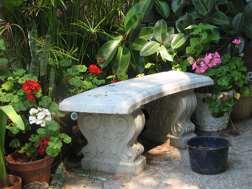 bench with geraniums