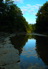 Upper Taughannock Reflection (CPSanford Photography) Tags: nature water outdoors outdoorphotography