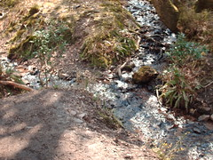 The confluence at site 2 (fibrebiz) Tags: water river stream somerset hills join flowing confluence quantock holford