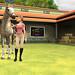 My_Horse___Me_2-WiiScreenshots21978Horse_hub_0016 par gonintendo_flickr