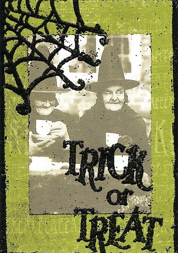 witchweb