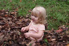 Cate in the leaf pile