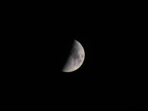 Half Moon, October 2008
