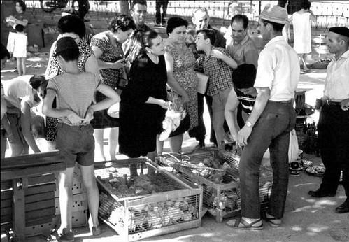 Paseo del Miradero. Años 60. Foto John Fyfe