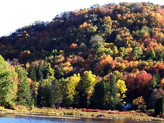 Hill of Many Colors! (Lisa Ann Photography) Tags: autumn trees fall nature beautiful colorful hill canaanvalley lisa5776