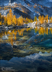Enchantment Lakes (Zack Schnepf) Tags: lake reflection water reflections reflective larch reflexions waterreflection enchantments subalpinelarch