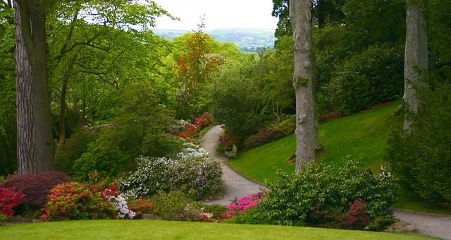 صور اجمل حدائق الورد 2013 ، صور حدائق الزهور 2013 ، صور حدائق ورد 2013 2987257827_bb8439843e_z.jpg