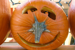 Smiling pumpkin (Doxieone) Tags: orange fall halloween wall pumpkin carved elizabeth charlotte president pumpkins northcarolina carolina 2008 democrats pumpkinwallset2008 halloweenfall2008set