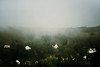 they move on tracks of never-ending light (.ultraviolett) Tags: trees houses fog view foggy trier outofhotelroom